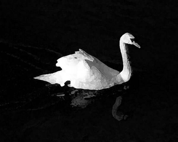 Swan Art Print featuring the photograph Swan In Blackwater by John Bradburn