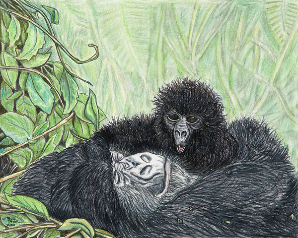 Gorilla Art Print featuring the drawing Time To Get Up by Stephen Taylor