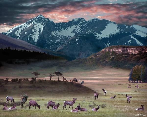 Wildlife Art Print featuring the digital art Wapiti Heaven by Bill Stephens