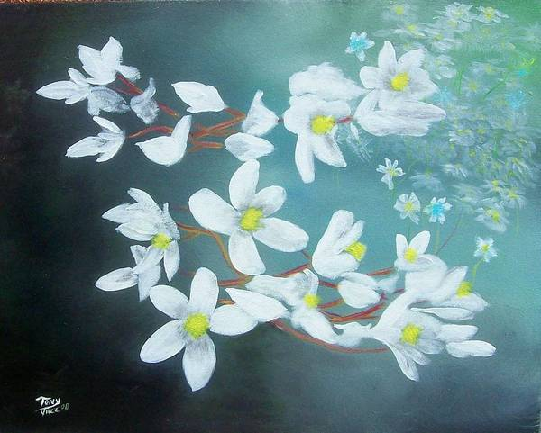 Flowers Art Print featuring the painting White Flowers by Tony Rodriguez