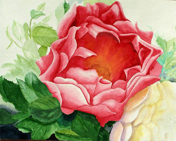 Red Rose Watercolor Painting Art Print featuring the painting Yes It Is A Rose by Robert Thomaston