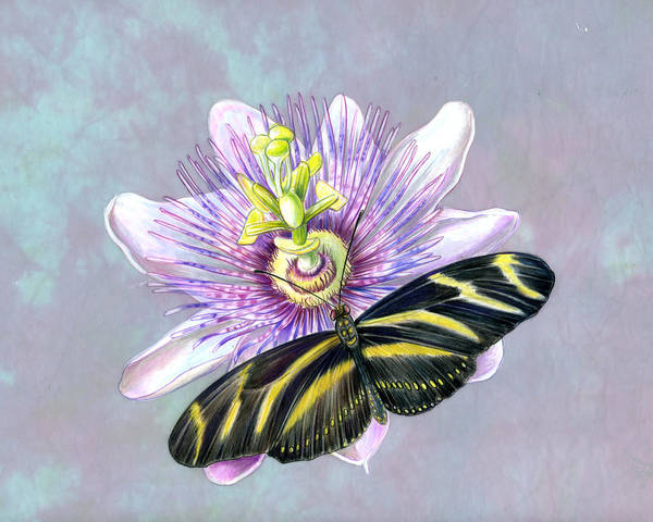 Moths Art Print featuring the painting Zebra Longwing by Mindy Lighthipe