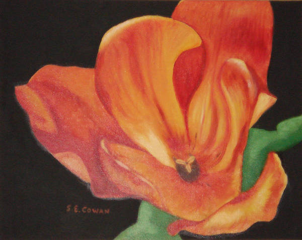 Tulip Art Print featuring the painting Inside The Tulip by SueEllen Cowan