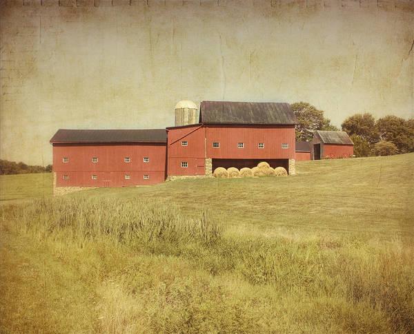 Farm Art Print featuring the photograph Down On The Farm by Kim Hojnacki