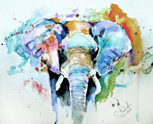 Elephant Art Print featuring the painting Splash Of Colour by Steven Ponsford