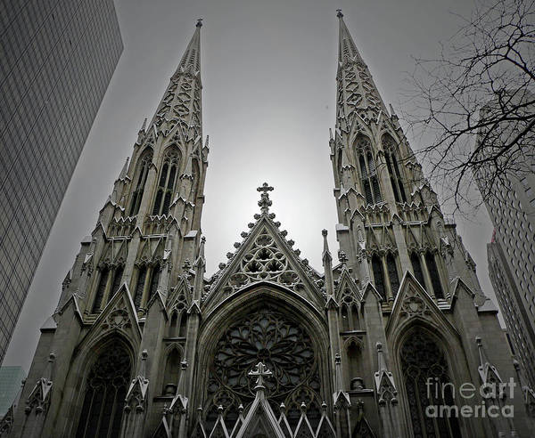 Cathedral Art Print featuring the photograph St. Patricks Cathedral by Angela Wright