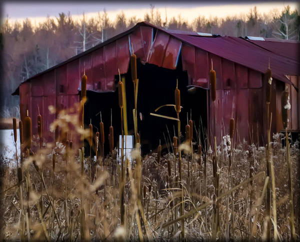 Tin Art Print featuring the photograph Tin Roof Rusted by Bill Cannon