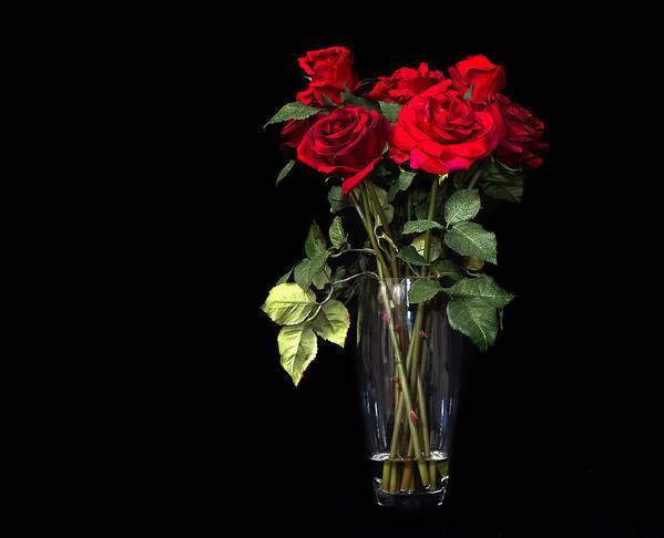 Vase Art Print featuring the photograph Elegant Red Roses by Trudy Wilkerson