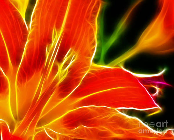 Flower - Electric Lily - Abstract Art Print featuring the photograph Flower - Lily 1 - Abstract by Paul Ward