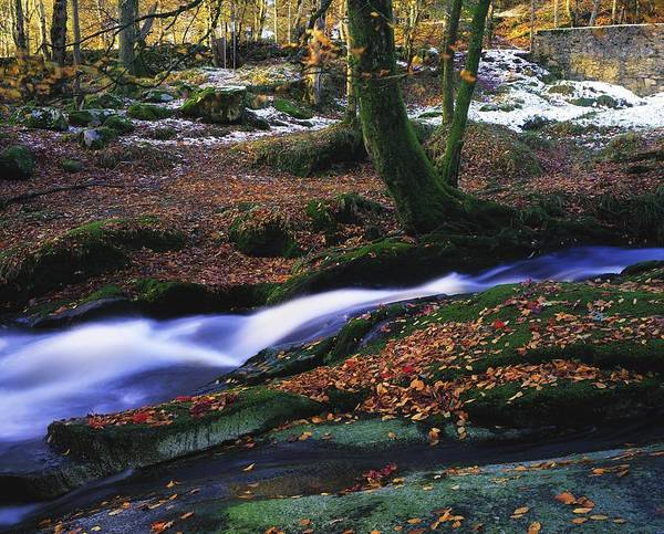 Co. Waterfall Print featuring the photograph Glenmacnass Waterfall, Co Wicklow by The Irish Image Collection