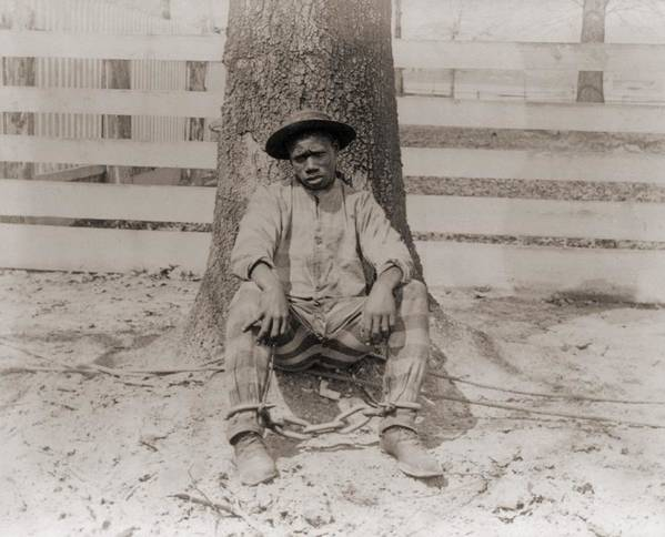 History Print featuring the photograph Young African American Sitting by Everett