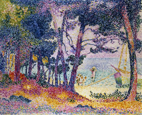 A Pine Grove Art Print featuring the painting A Pine Grove by Henri-Edmond Cross