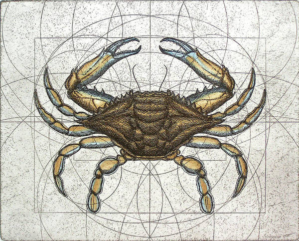Maryland Art Print featuring the painting Blue Crab by Charles Harden