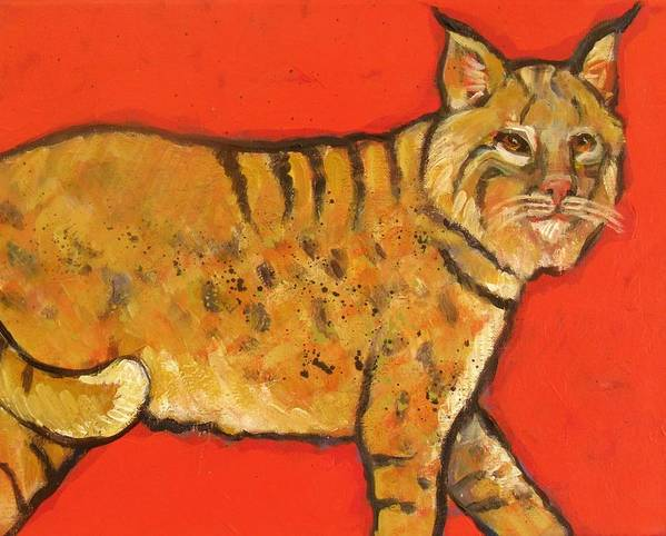 Bobcat Art Print featuring the painting Bobcat Watching by Carol Suzanne Niebuhr