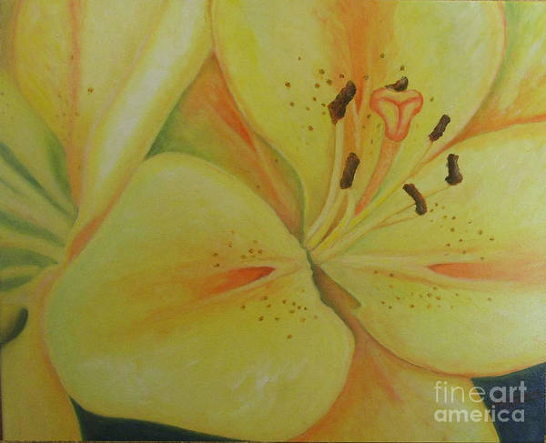 Lily Art Print featuring the painting Lily Of The Spring by Oscar Arauz