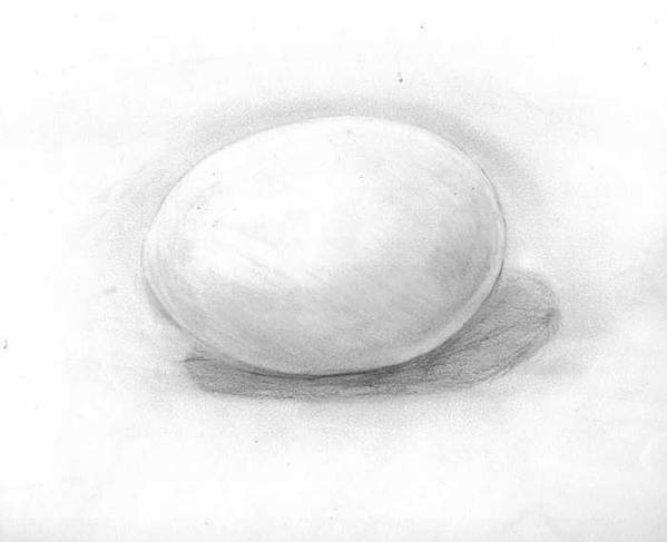 Egg Art Print featuring the drawing observation EGG ON WHITE by Katie Alfonsi