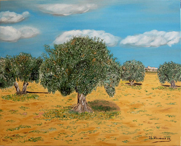Olive Art Print featuring the painting Olive Trees In Summer by Jose Luis Villagran Ortiz