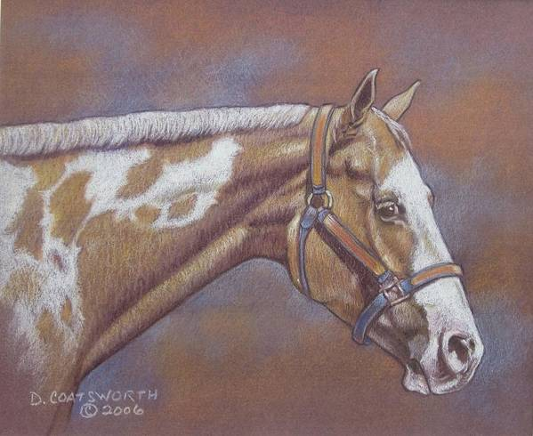 Art Print featuring the painting Paint Horse by Dorothy Coatsworth