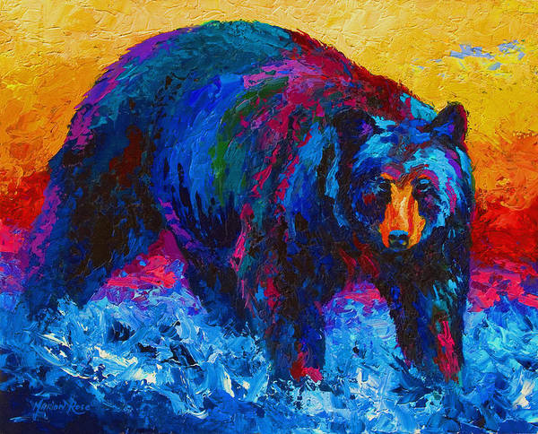 Western Art Print featuring the painting Scouting For Fish - Black Bear by Marion Rose