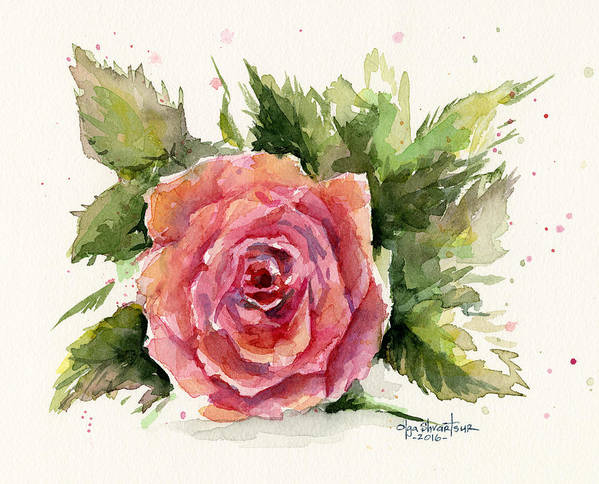 Rose Art Print featuring the painting Watercolor Rose by Olga Shvartsur