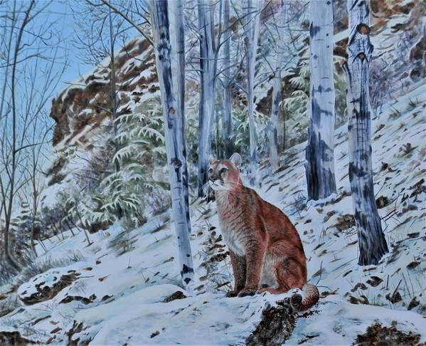 Mountain Lion Art Print featuring the painting Mountain Lion by John Neeve