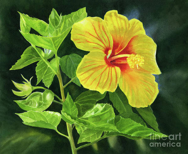 Yellow Art Print featuring the painting Yellow Hibiscus With Bright Green Leaves by Sharon Freeman