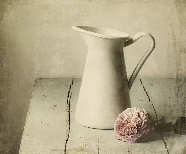 Pitcher Art Print featuring the photograph Femininity by Amy Weiss