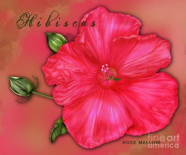 Hibiscus Art Print featuring the digital art Hibiscus Digi by Margaret Newcomb