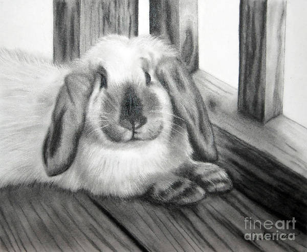 Bunny Art Print featuring the painting Punky Bunny by Jane Steelman
