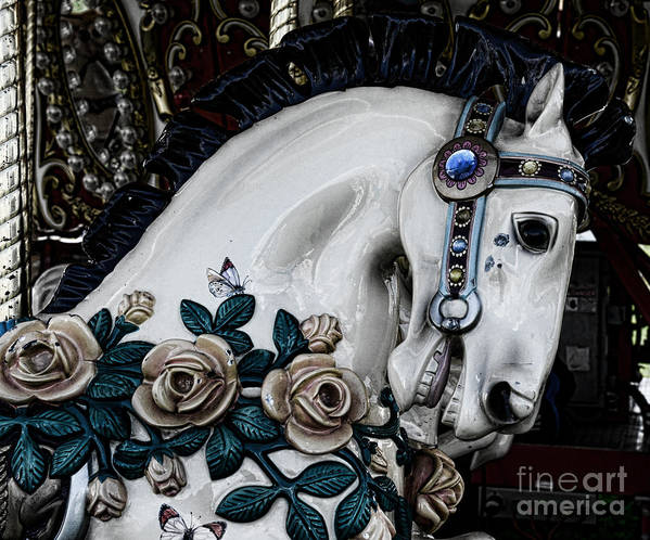 Dark Horse Print featuring the photograph Carousel Horse - 8 by Paul Ward