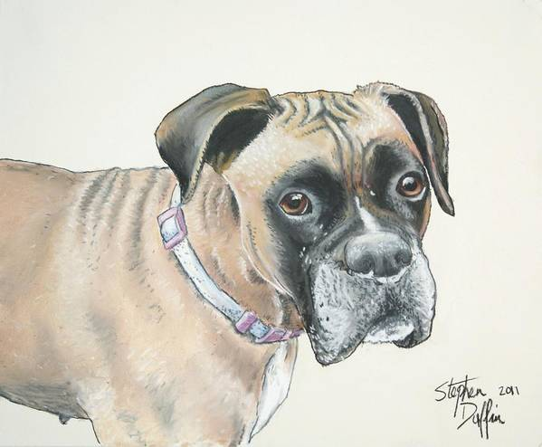 Dog Art Print featuring the pastel Is Pink Really My Color... by Stephen Duffin