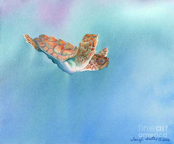 Sea Art Print featuring the painting A Turtles Flight by Tracy L Teeter