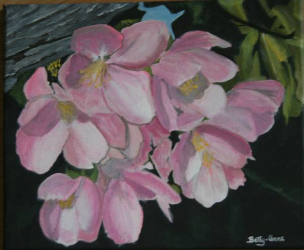 Flowers Art Print featuring the painting Apple Blossoms by Betty-Anne McDonald