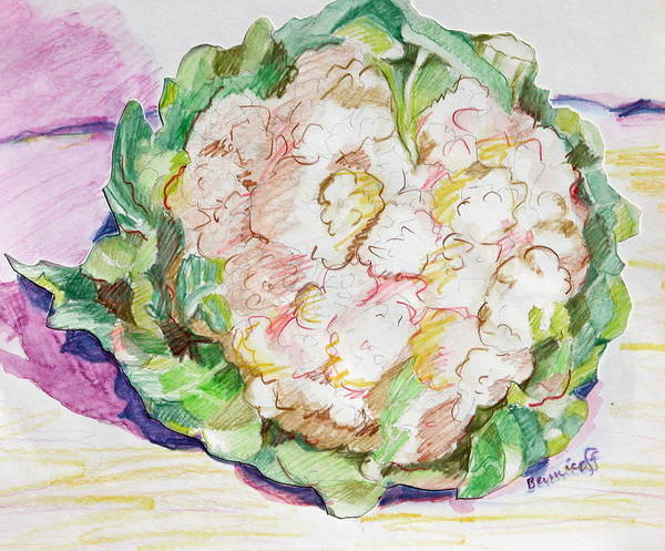 Cauliflower Art Print featuring the painting Califlower by Jan Bennicoff