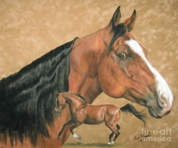 Arabian Art Print featuring the painting Jedi by Gail Finger