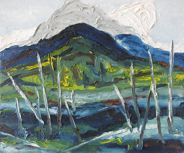 Fournier Art Print featuring the painting Mt Gosford by Francois Fournier