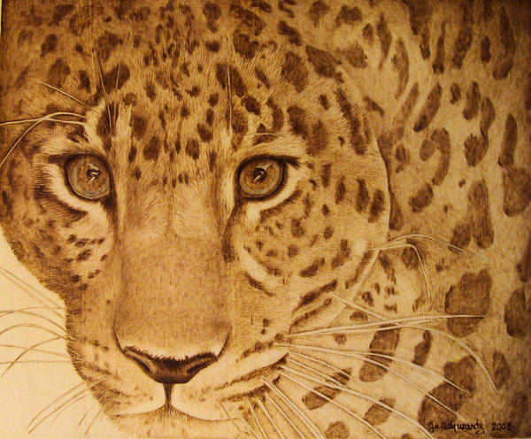 Jaguar; Sepia; Wild Life; Africa; Eyes; Zoo; Cat; Art Print featuring the pyrography Take One Step Closer by Jo Schwartz