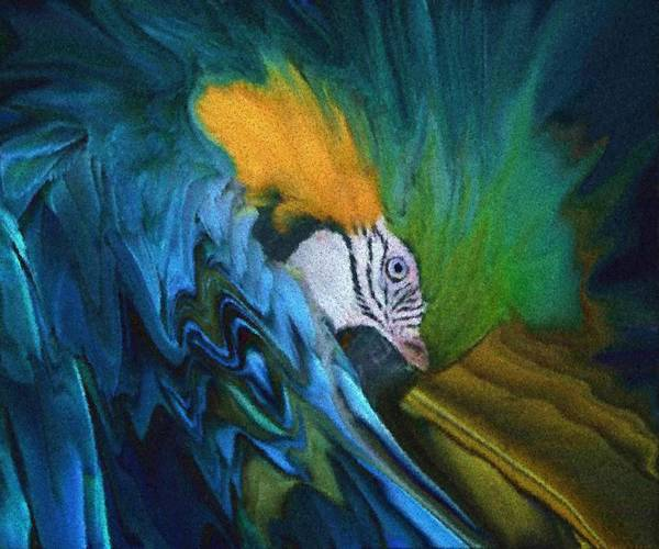 Bird (the Timid) Art Print featuring the digital art The Timid by Andrea N Hernandez