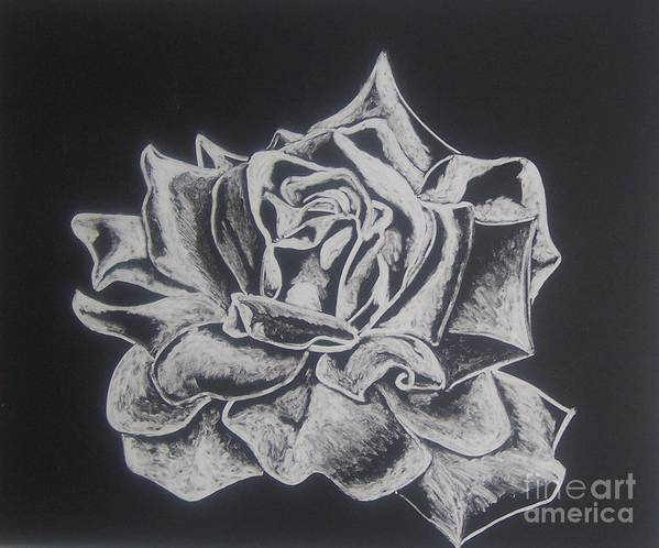 Rose Art Print featuring the painting Unfold by Emily Young
