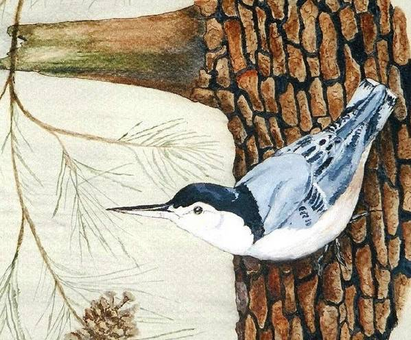 Nuthatch Art Print featuring the painting Upside Down by Debra Sandstrom