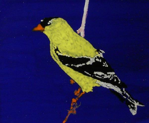 Yellow Finch Art Print featuring the painting Yellow Finch by Grant Van Driest