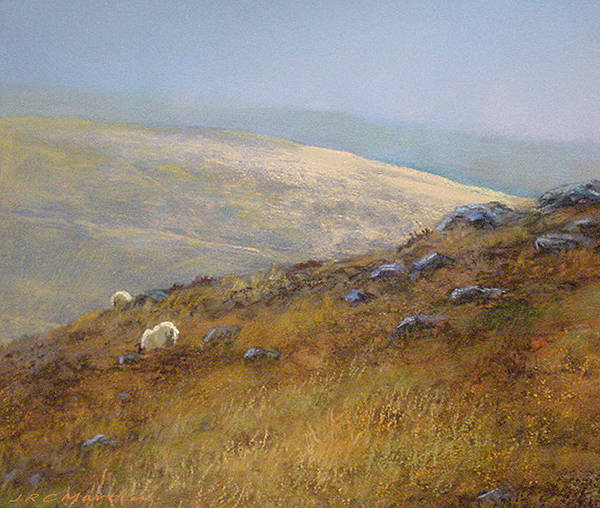 Landscape Art Print featuring the painting Moorland Sheep by James Martin