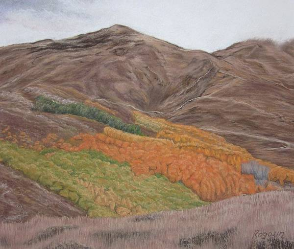 Landscape Art Print featuring the pastel The Valley Of Color by Harvey Rogosin
