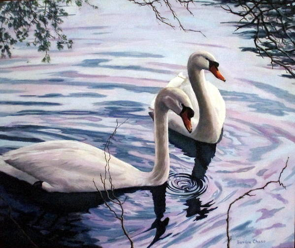 Swan Art Print featuring the painting Two Swans A Swimming by Sandra Chase