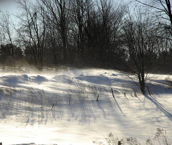 Winter Art Print featuring the photograph Winter Breeze by Donna Desrosiers