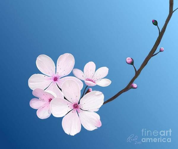 Flowers Art Print featuring the painting Cherry Blossoms by Rand Herron