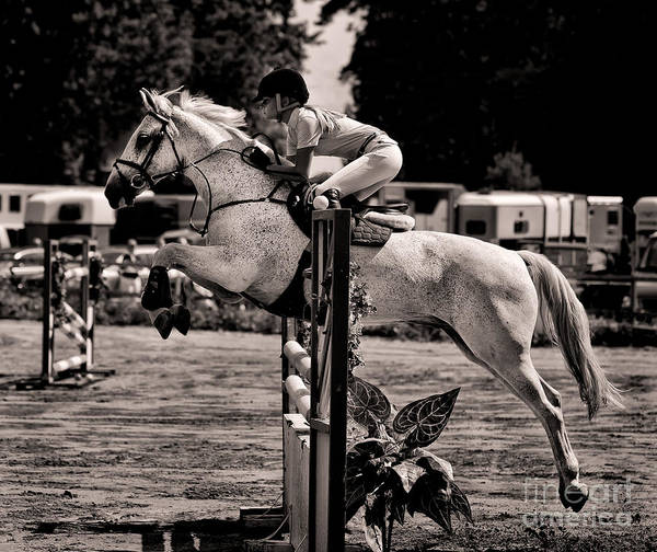 Horse Art Print featuring the photograph Clearing The Hurdle by Ari Salmela