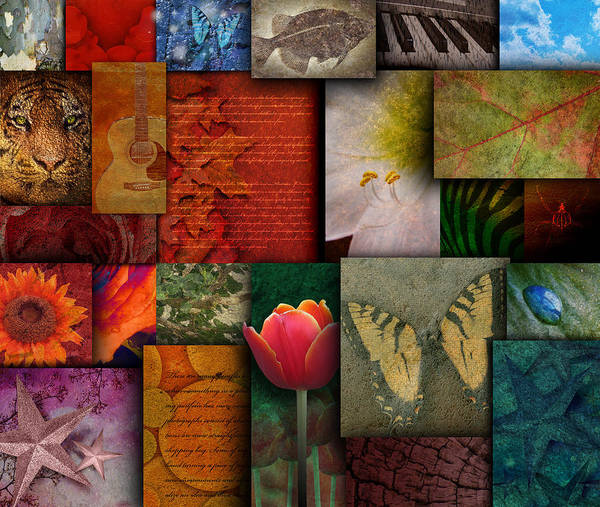 Abstract Print featuring the photograph Mosaic Earth Tone Nature Rough Patterns by Angela Waye