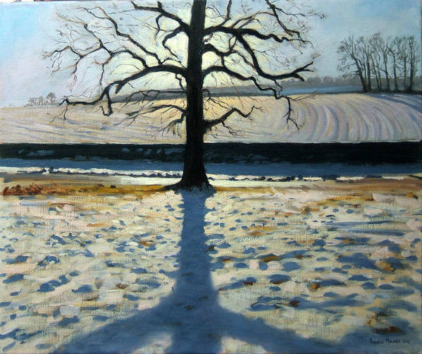 English Landscape Print featuring the painting Tree And Shadow Calke Abbey Derbyshire by Andrew Macara