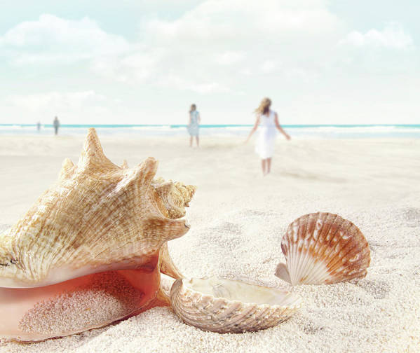 Aquatic Art Print featuring the photograph Beach Scene With People Walking And Seashells by Sandra Cunningham